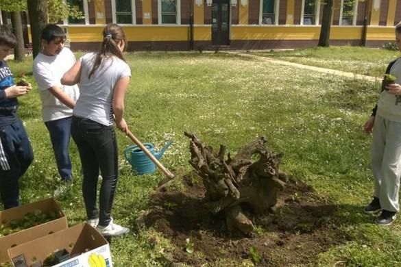 Школяре ушорели парк опрез школи