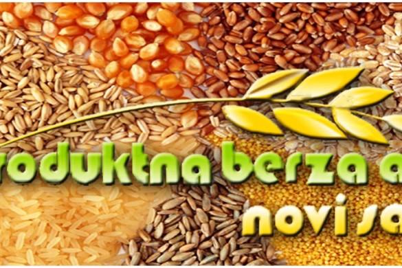 12-Berza
