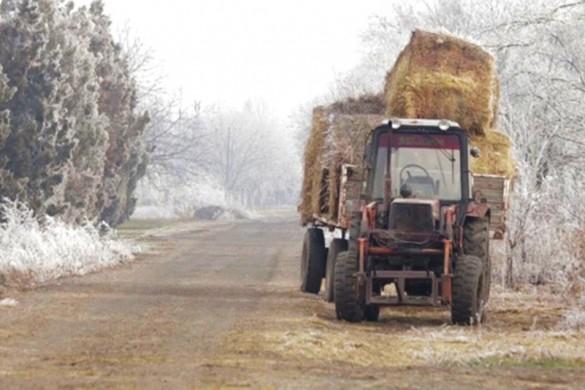 8-Poljoprivreda