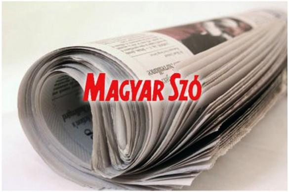 8-Madjare