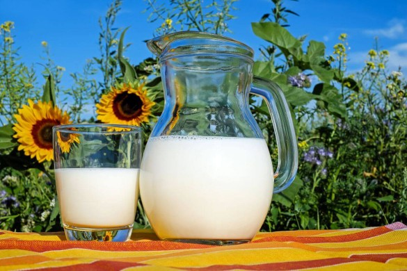 12.10-mljeko