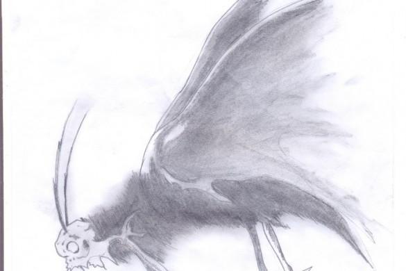 Уметносц як гоби – Дарко Папуґа